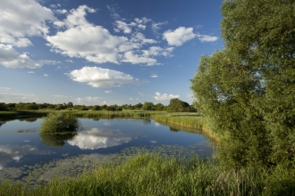 Woodwalton Fen in Cambridgeshire was the first nature reserve of the Wildlife Trusts movement - Image: Mark Hamblin/2020VISION
