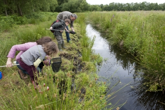 Family pond dipping at a wetland nature reserve
